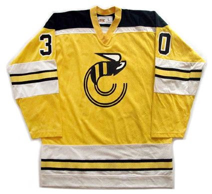 Cincinnati Stingers 1978-79 jersey photo Cincinnati Stingers 1978-79 F jersey.jpg