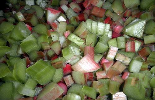 Easy Rhubarb Dessert