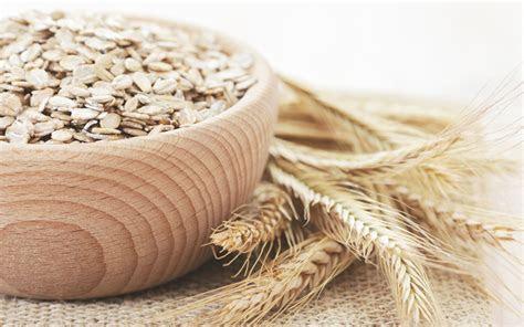 Food Cereals Wheat wallpaper   1680x1050   #24402