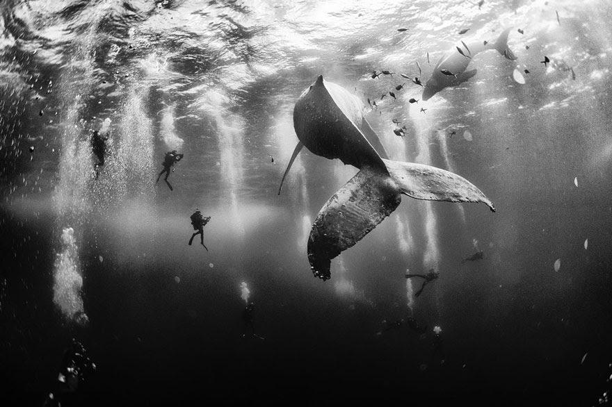 geográfico-viajero nacional-foto-concurso-2015-8