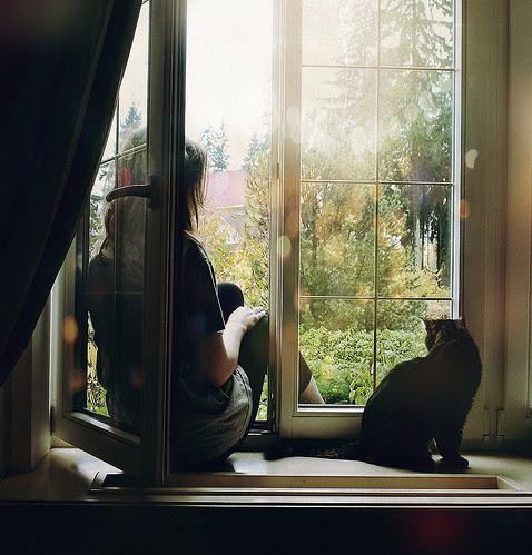 beautiful, cat, contemplative, dfghik, female, girl