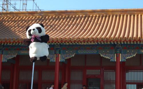 Forbidden Panda