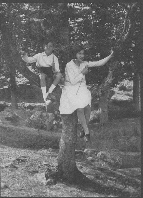 Niños sobre una encina en Toledo a inicios del siglo XX. Fotografía de Pedro Román Martínez