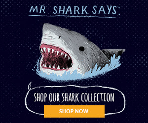 Shop the shark collection
