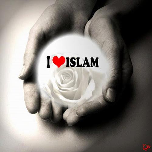 http://abuthalib.files.wordpress.com/2010/01/love-islam1.jpg