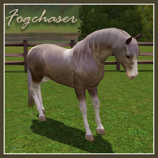 Fogchaser_Covershot01
