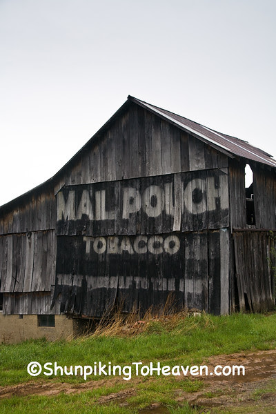 Dilapidated Mail Pouch Tobacco Barn, Morgan County, Ohio