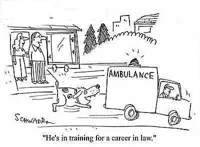 dog_chasing_ambulance