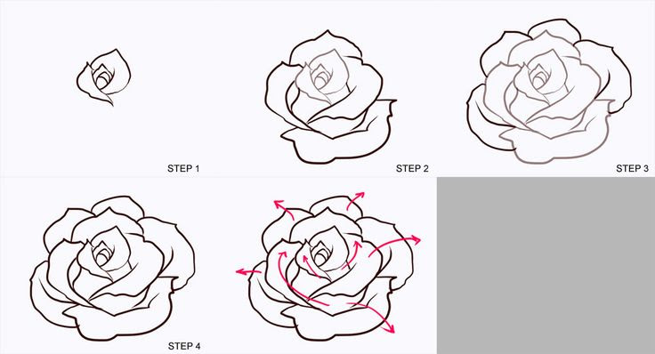 How To Draw A Rose Tattoo Design Step By Step Tattoos Pop Clip
