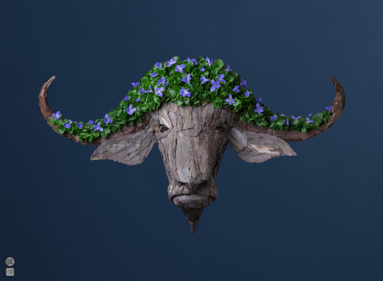 Bastoncini, semi e petali del sud-ovest americano ispirano nuove composizioni di Raku Inoue