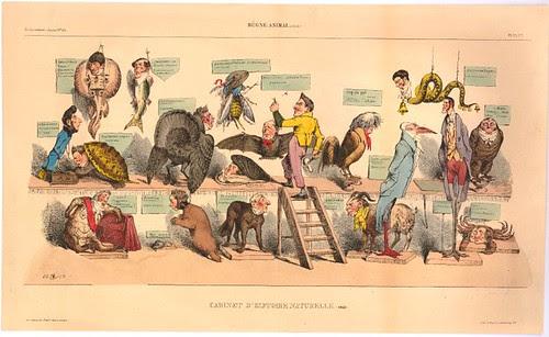 La Caricature - Cabinet d'histoire naturelle. (suite)