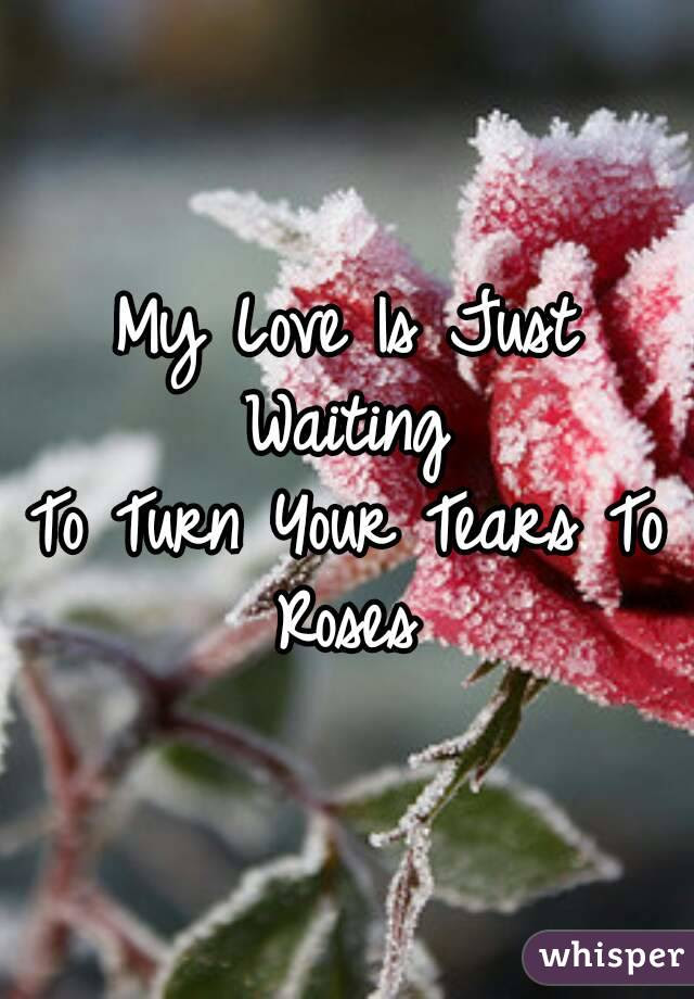 My Love Is Just Waiting To Turn Your Tears To Roses