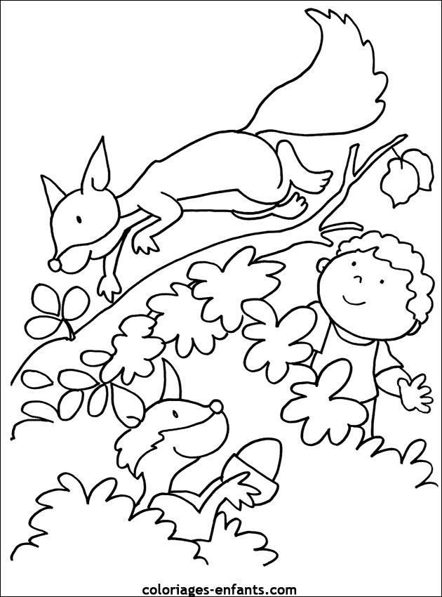 67 Dessins De Coloriage écureuil à Imprimer Sur Laguerchecom Page 3