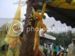 Monyet kuning