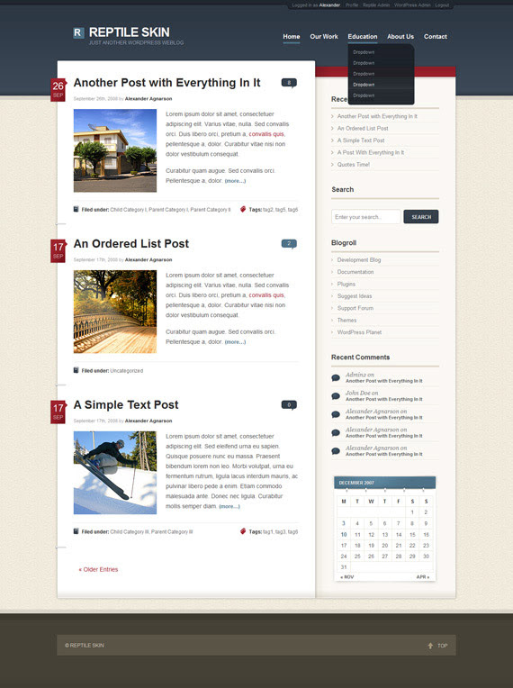 Plush-inspiration-wordpress-blog-designs