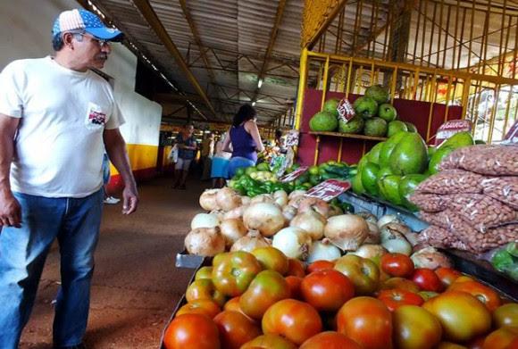 agricultura-campesino-11-cuba-foto-abelrojas