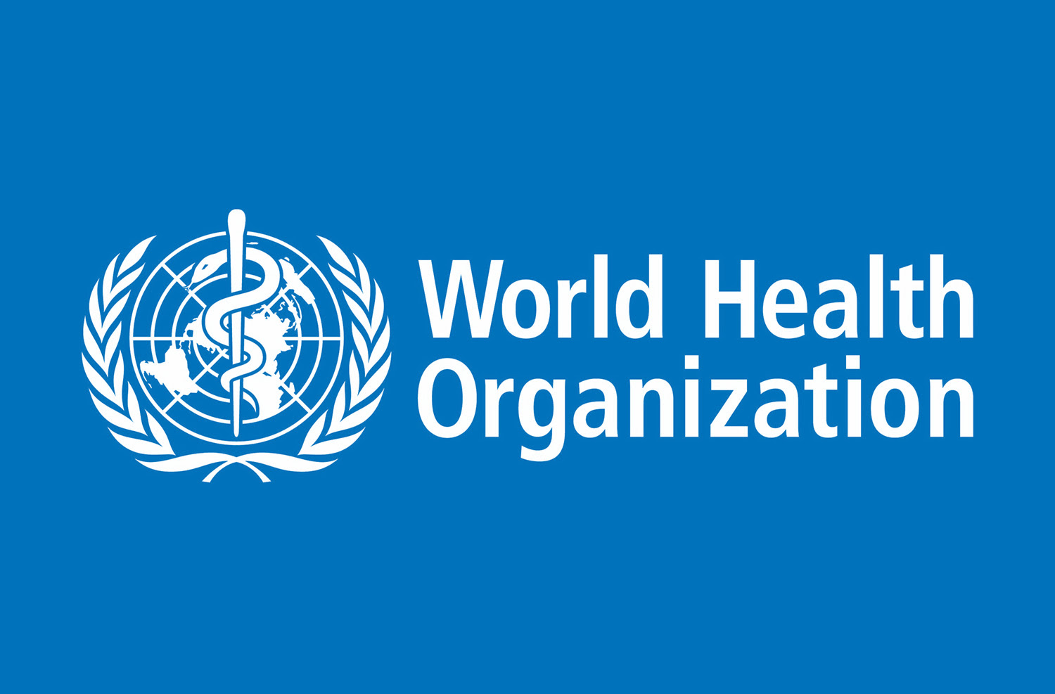 Incident Manager at World Health Organization Nigeria