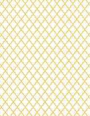 5-JPEG_mango_BRIGHT_outline_SML_moroccan_tile_standard_350dpi_melstampz