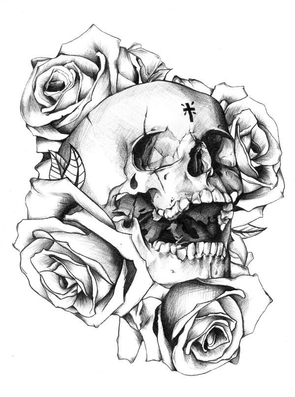 Skull Rose Drawing At Getdrawingscom Free For Personal Use Skull