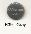 B39 Gray