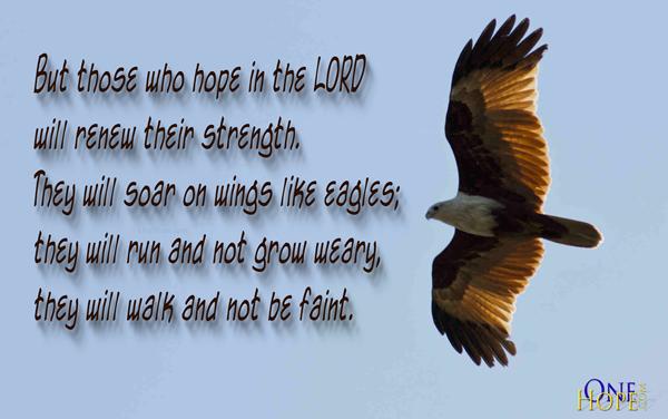 Soar Like An Eagle Onehope