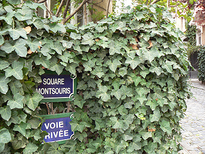 square montsouris