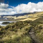 Panorama del agua en Colombia: retos y acciones - El Nuevo Siglo (Colombia)