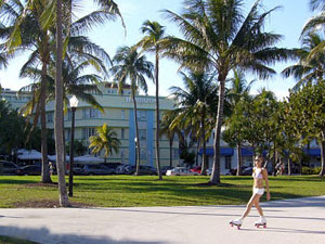 pet friendly hotels in miami beach