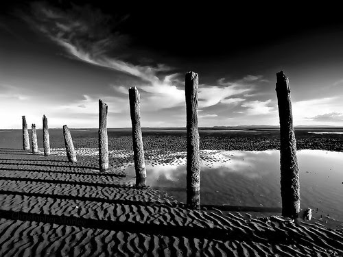 8 Pilings Casting Shadows por Christopher M.