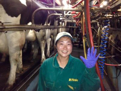 joosun-milkmaid.jpg