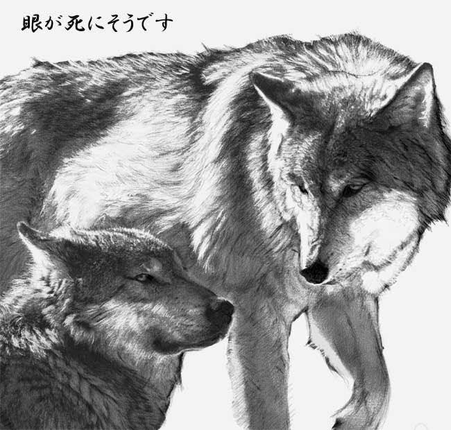 日々盛り削り道 親子狼パッケージ用イラスト描きで網膜剥がれそうに