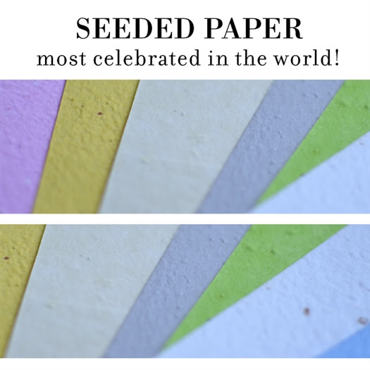 Seeded Paper