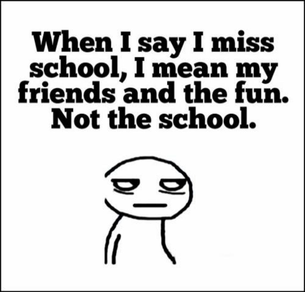 Quotes About School Funny 63 Quotes