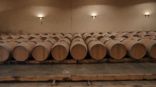 오크통에서 잠자고 있는 와인. 오랜 세월이 지나면 묵은 술은 신비한 액체로 변신한다./사진=이서현