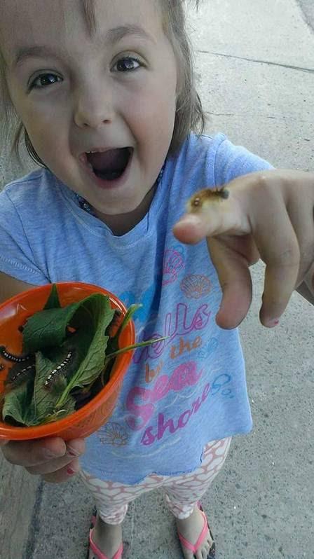 Com um pote cheio de larvas, Sophia mostra uma minhoca no dedo