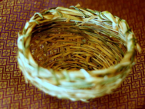 IMG 8442  My first basket