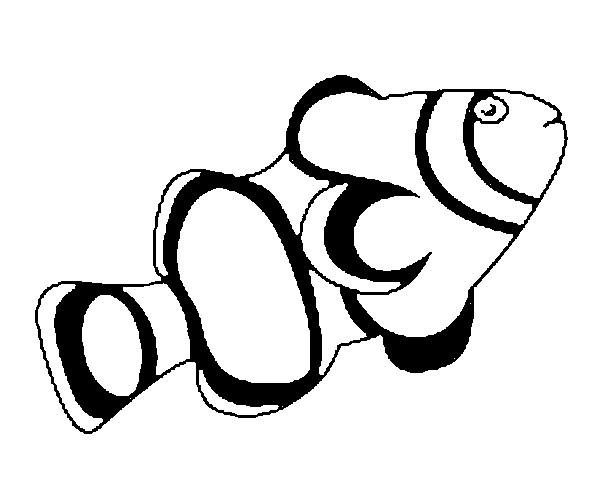 Disegno Da Colorare Pesce Daprile 6