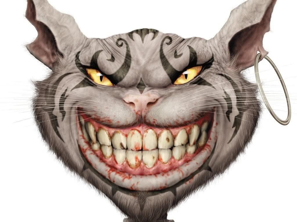 Cheshire Cat photo american-mcgees-alice-cat.jpg