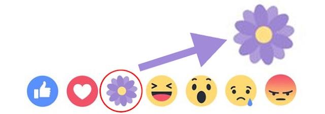 Ý nghĩa biểu tượng hoa trong nút like facebook có ý nghĩa gì?