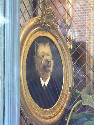 cadre chien 1.jpg