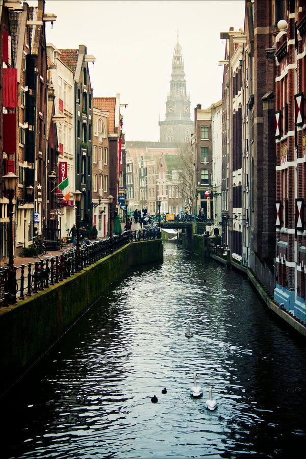 In the middle of reading The Fault in Our Stars and I'm a little obsessed with Amsterdam right now.