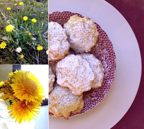 biscotti ai fiori di tarassaco