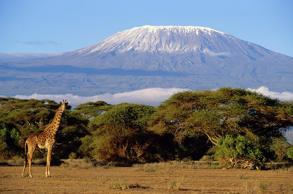 Majestic: Mount Kilimanjaro in Tanzania has made it onto the list of 28 finalists f  or the poll