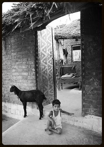 jahaan suraj sabase pahale aa kar dale apana pheraa wo bharat desh hai mera by firoze shakir photographerno1