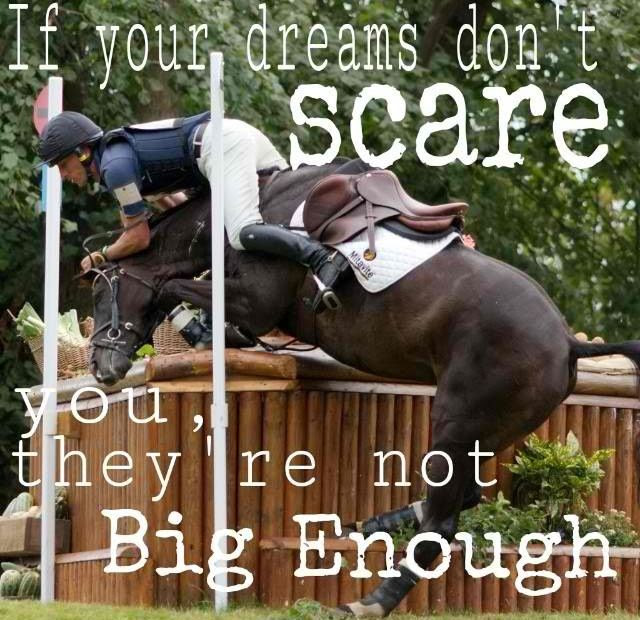 Quotes About Riding Horses Wwwpicswecom