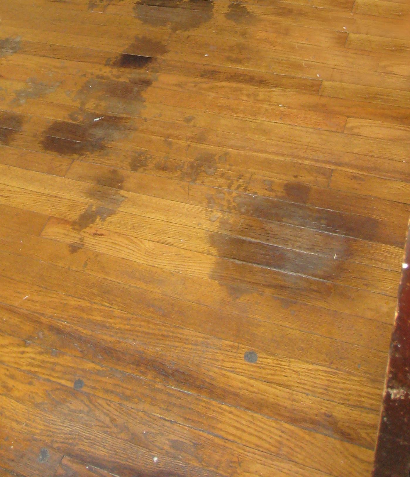 woodfloor_stains1