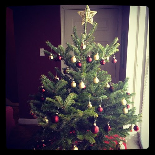 My first real Christmas tree!