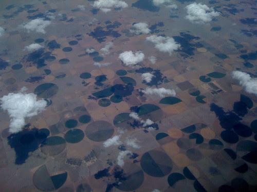4crop circles -- many.jpg