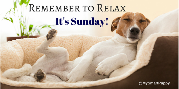 Remember To Relax Its Sunday Pictures Photos And Images For