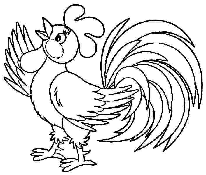 Morning bird 14 rooster coloring pages  Print Color Craft
